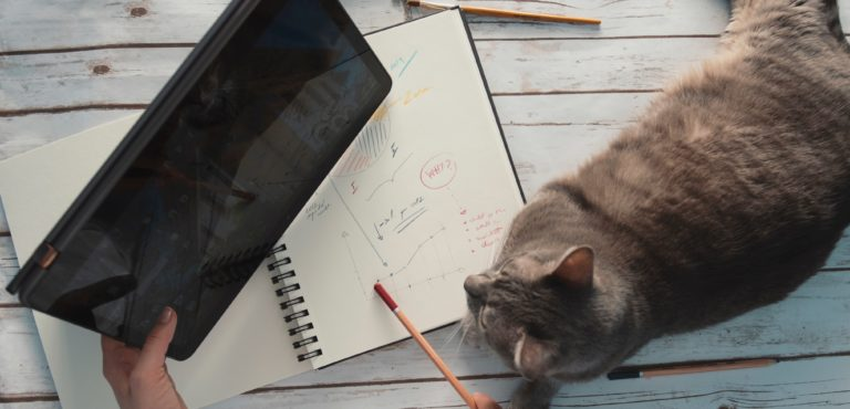 Top 4 Essential Productivity Tools That Will Help You Work From Home